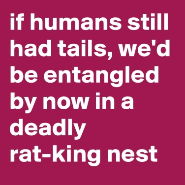 if-humans-still-had-tails-we-d-be-entangled-by-now-1